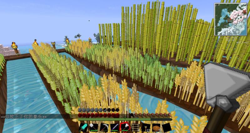 小麦和甘蔗